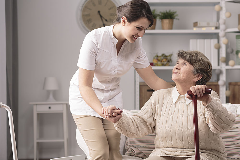 Read more about the article Alzheimer's Disease 101