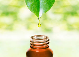 What Can Essential Oils Do?